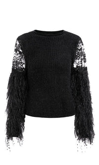Cold Snap Feather Fringe Long Sleeve Sheer Mesh Lace Round Mock Crew Neck Pullover Sweater - Sold Out