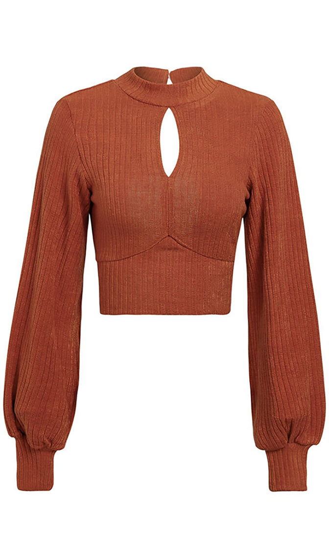 Talking In Circles Long Lantern Sleeve Mock Neck Keyhole Cut Out Back Bow Pullover Crop Sweater - 3 Colors Available