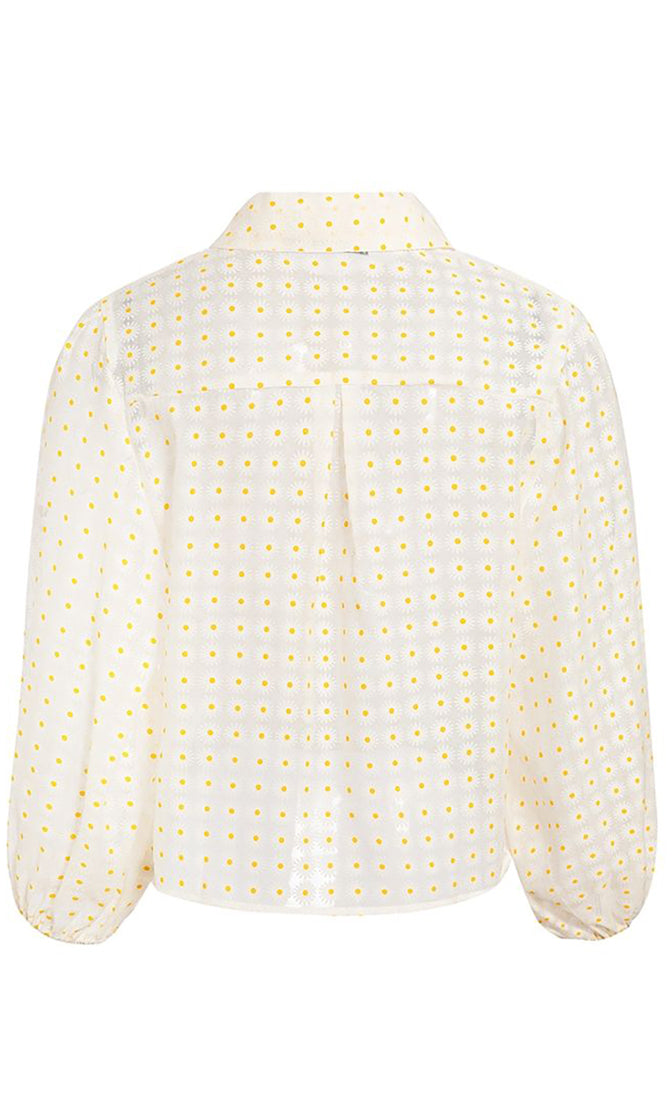 Sheer Simplicity Beige Sheer Mesh Floral Pattern Long Lantern Sleeve Button Front Crop Top Blouse