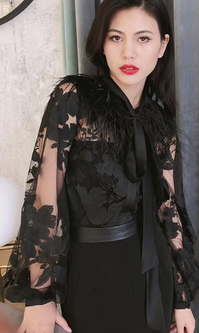 Queen Of Kyoto Sheer Mesh Floral Pattern Long Lantern Sleeve Feather Tie Neck Blouse Top