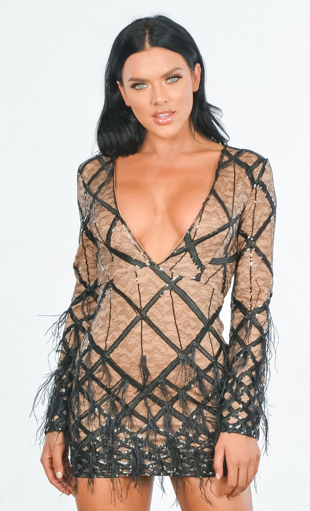 Made You Blush Lace Geometric Pattern Sequin Feather Long Sleeve Plunge V Neck Bodycon Mini Dress