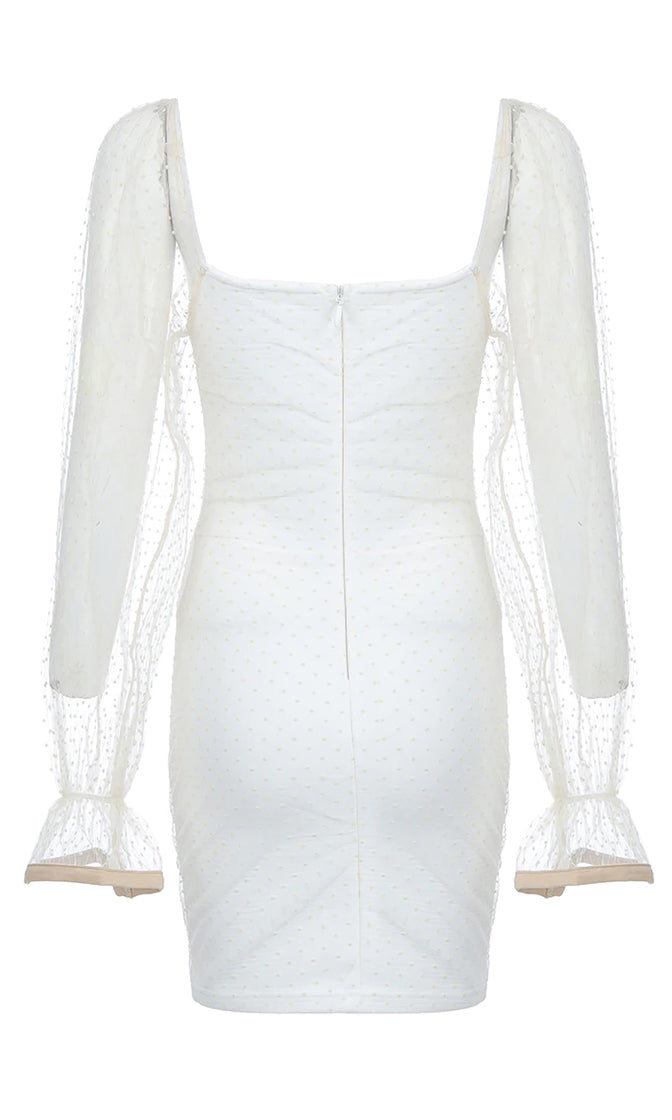 Keep It Quiet White Sheer Mesh Lace Dot Pattern Long Sleeve V Neck Ruched Bodycon Mini Dress