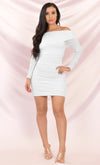Soft Petals Light Pink Ruched Off the Shoulder Sheer Mesh Bodycon Long Sleeve Mini Dress - 2 Colors Available