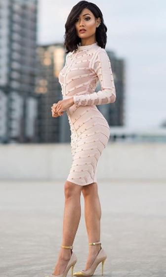 Secret Fantasy Blush Light Pink Apricot Stud Long Sleeve Sheer Mesh Stripe Crew Neck Bodycon Bandage Midi Dress