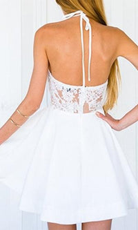 Sheer Spirit Sheer Mesh Lace Sleeveless Backless Halter Skater Circle A Line Flare Mini Dress - 2 Colors Available - Sold Out