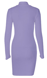 Beyond My Control Ribbed Long Sleeve Turtleneck Casual Bodycon Mini Dress