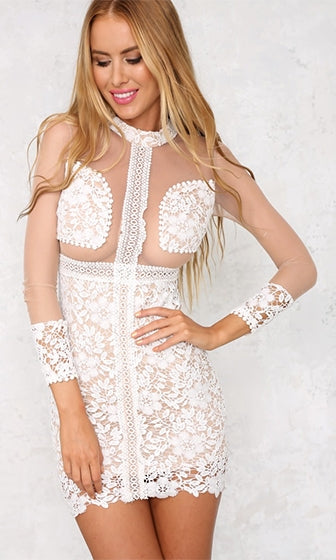 I'm Not That Innocent White Nude Sheer Mesh Lace Long Sleeve Round Neck Bodycon Mini Dress - Sold Out