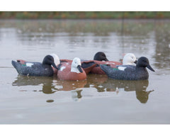 Game On Paradise Duck Swimming Decoy Family: 6-Pack