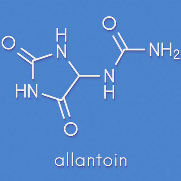 Ingredient Spotlight: Allantoin