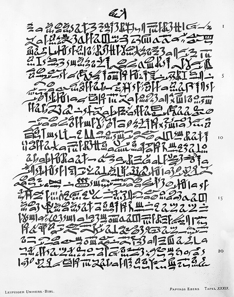 Page from the Ebers Papyrus ancient Egypt acne remedy recipe
