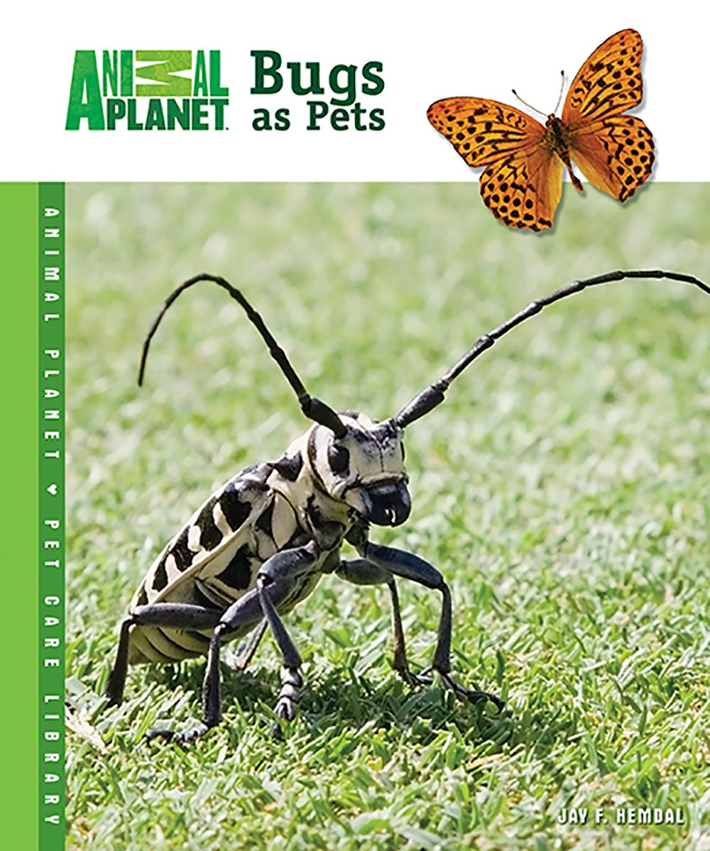 Animal Planet Bugs as Pets, HDG97