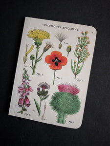 Wildflower Specimen Notebook