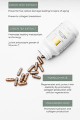 AGELESS™ Antioxidant Vitamin