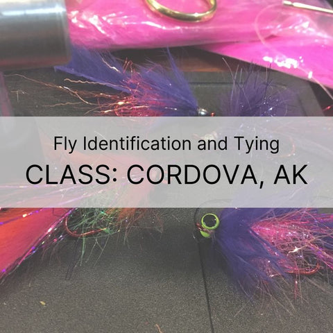 July 25th | Fly Identification and Fly Tying in Cordova, AK