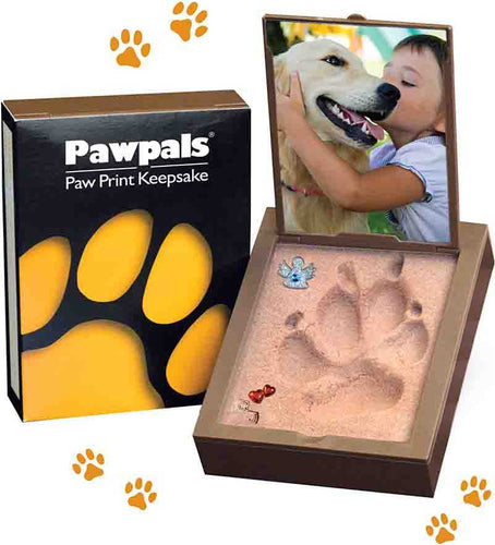 Paw Print Kit. Easy to use paw print mold for your dog.