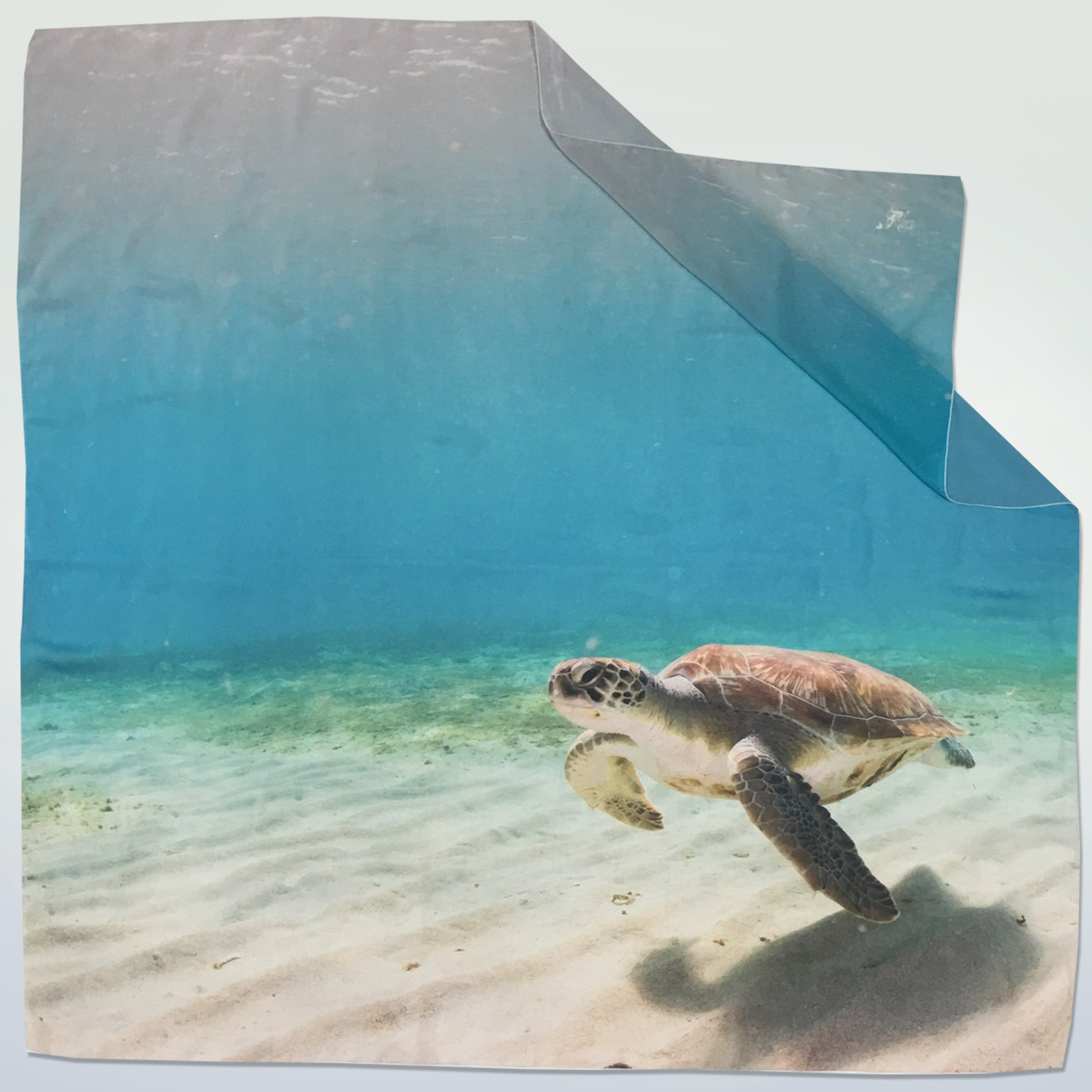 Sea Turtle Chiffon Sarong - Cape Cali