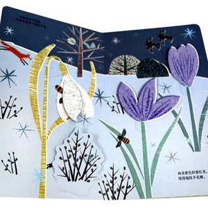 Flower and Bee lift a flap book 花儿与蜜蜂翻翻书