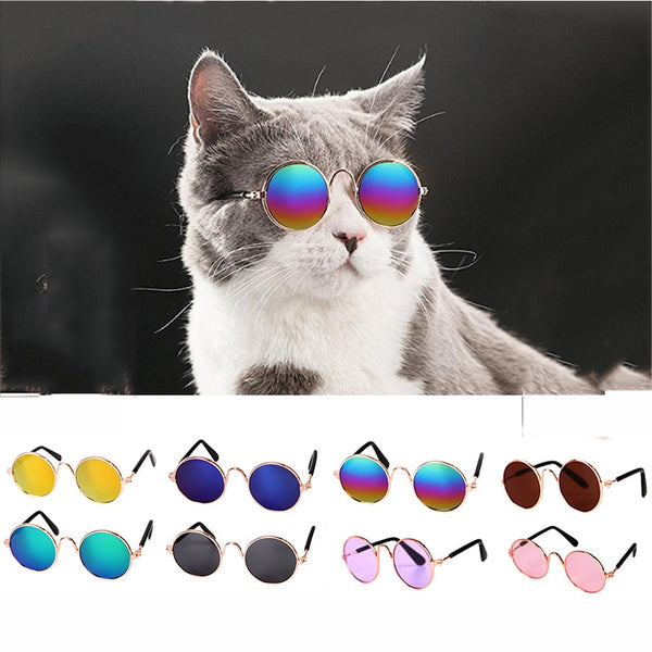 1pc Dogcat Pet Glasses Or Hat Props The Trendy Shack
