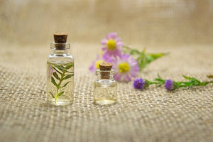 5 Essential Oils for a Quick and Natural Energy Boost