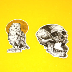 """Owl x Bungo"" Sticker"