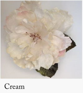 Cabbage Rose Cream