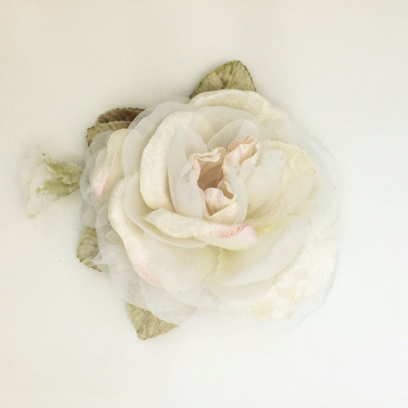 Peony rose cream & hazelnut velvet rose
