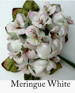 viola posy ...meringue white
