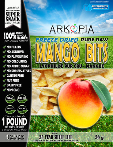 Freeze Dried Pure Raw Mango Bits - COMING SOON