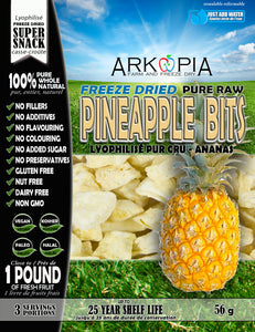 Freeze Dried Pure Raw Pineapple Bits - COMING SOON