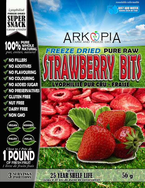 Freeze Dried Pure Raw Strawberry Bits - COMING SOON