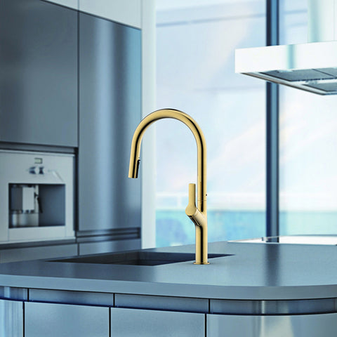 Tapron kitchen pull out tap