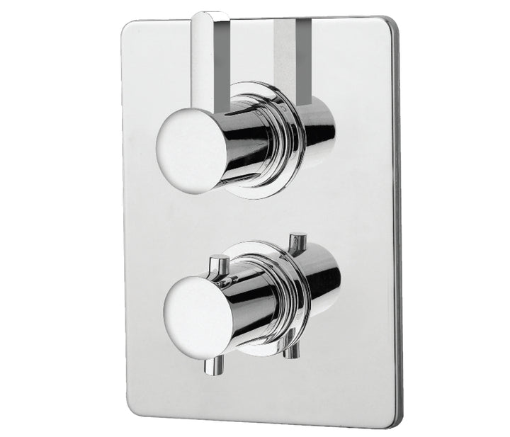 Thermostatic Concealed 1 Outlet Shower Valve