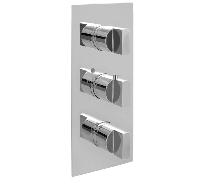 Concealed Thermostatic 2 Outlet Shower Valve - Vertical