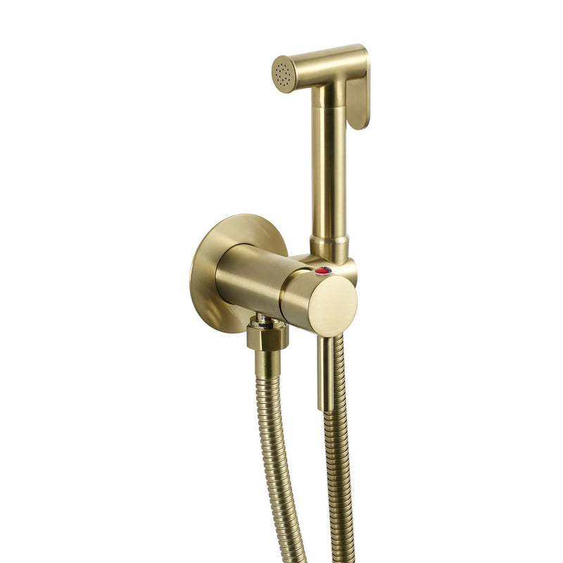 Modern Easy to Use Lever Handle coupled with Brushed Brass Douche Set for Cold and Hot Manual Operation with increased Mobility, MP 0.5 [23556BBR]
