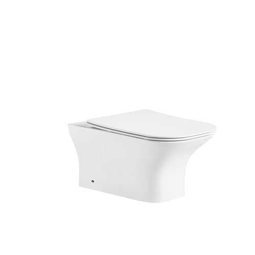Back to Wall WC Pan with UF Single Button Seat Cover