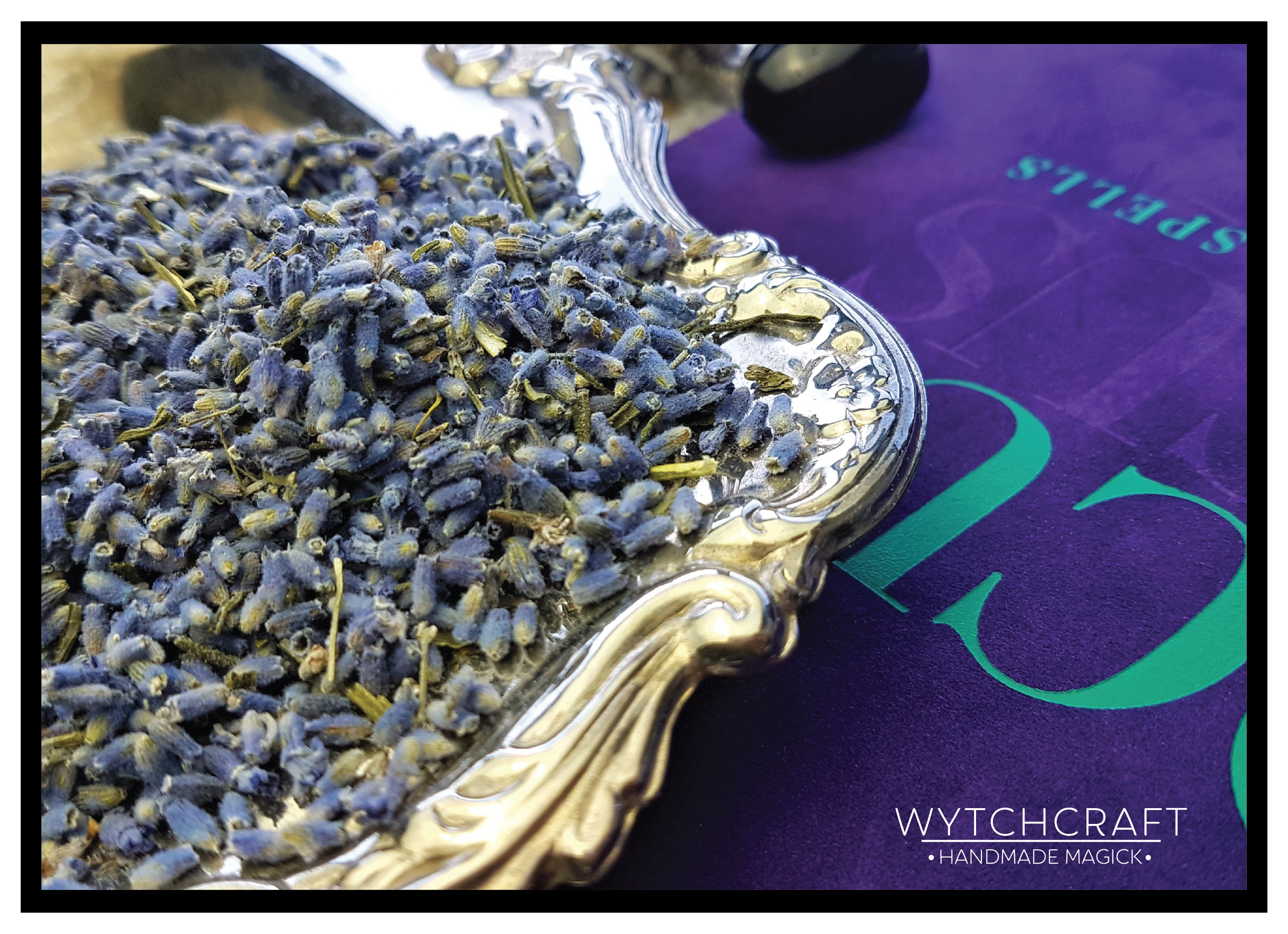Lavender | Homegrown Organic Witches Herb