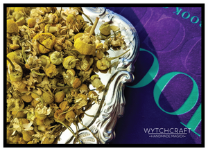 Chamomile |  Organic Witches Herb