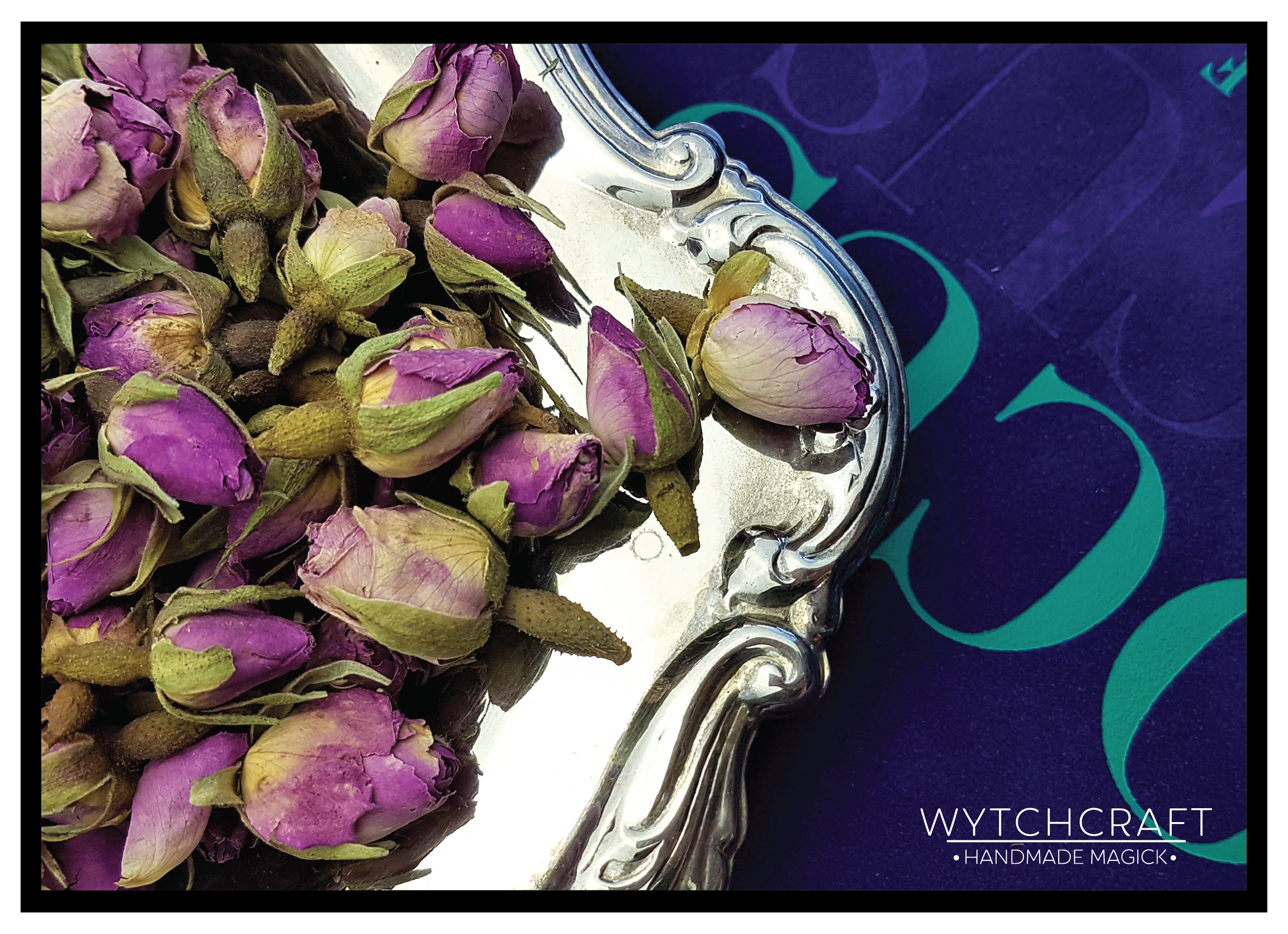 Pink Rose | Homegrown Organic Witches Herb