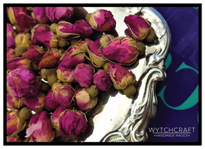 Red Rose Bud  | Homegrown Organic Witches Herb