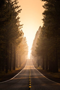 Smokey-Forest-Road-Sunset-Mark-Hannah-Photography