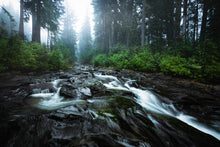 Moody-Atmospheric-Paradise-River-Mount-Rainier-National-Park-Washington-USA-Mark-Hannah-Photography