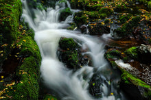 Go-With-The-Flow-Stream-River-Rocks-Catlins-New-Zealand-Mark-Hannah-Photography