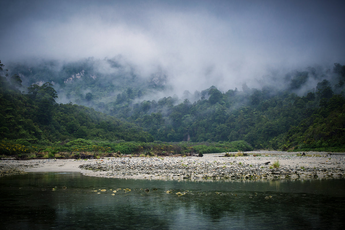 Misty-Forest-West-Coast-New-Zealand-Mark-Hannah-Photography