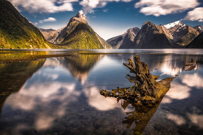 Mitre-Peak-Log-Reflections-Milford-Sound-New-Zealand-Mark-Hannah-Photography