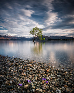 Moody-Long-Exposure-That-Wanaka-Tree-Lake-Mountains-Mark-Hannah-Photography