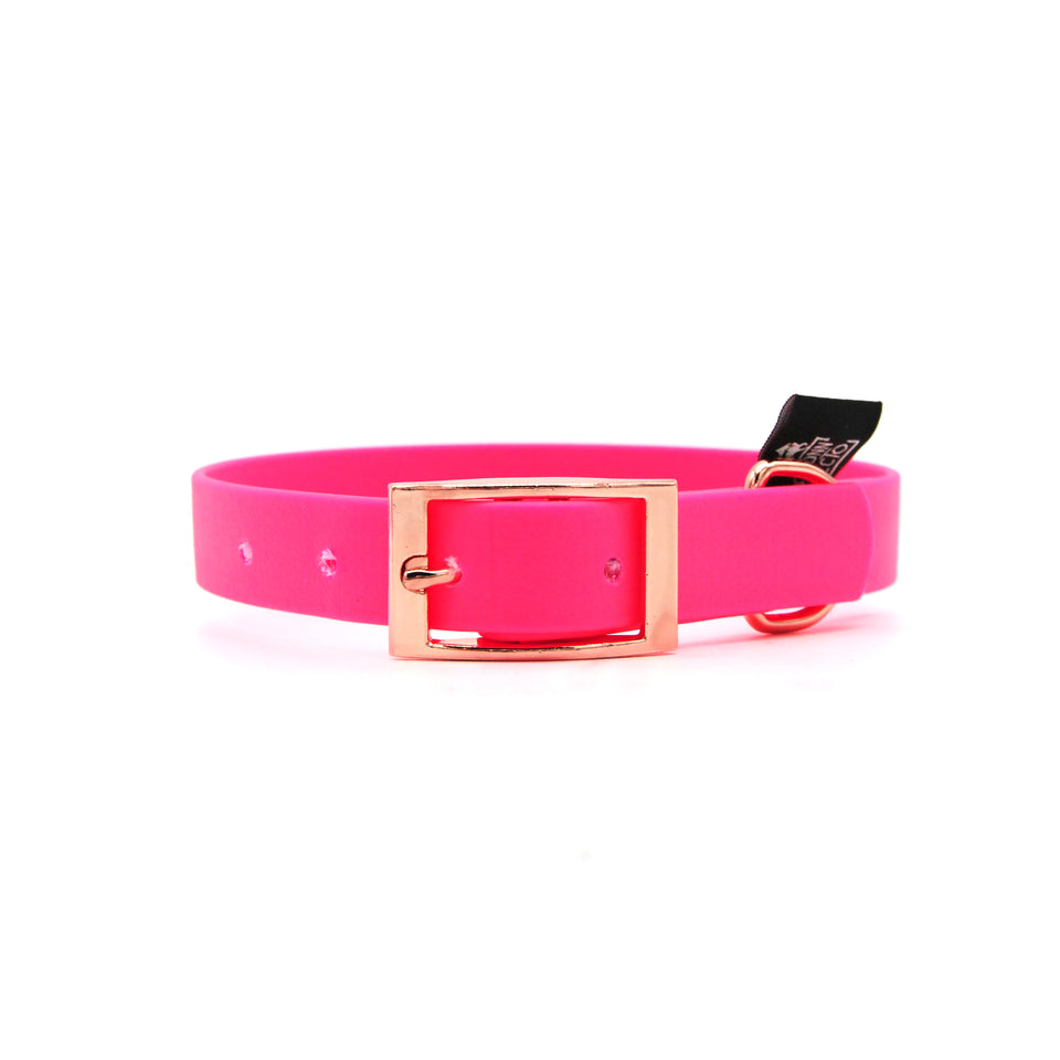 Collare in Biothane 20mm Fucsia regolabile 24cm-32cm con fibbia Oro Rosa - Connecto.dog
