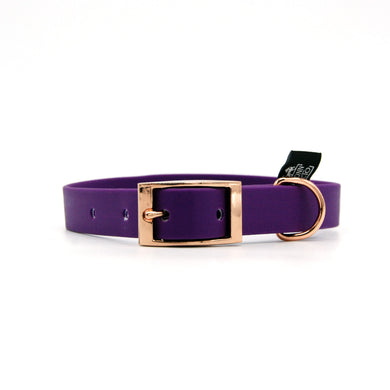 Collare impermeabile 20mm Viola con catarifrangente con fibbia in alluminio - Collari in PVC/TPU  - Connecto.dog
