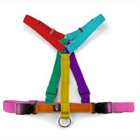 Pettorina comfort fit Virtuosa Multicolore - Pettorina ad H per cani  - Connecto.dog
