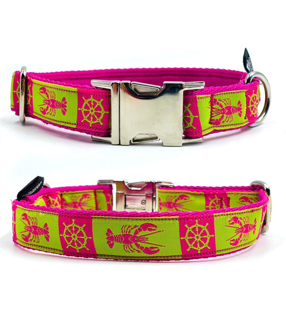 OhMyDog! Collare per cani Pink and Green Lobster - Collare con applicazione  - Connecto.dog
