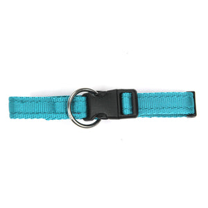Collare per cani Sky in polipropilene cushion - Collari in polipropilene  - Connecto.dog